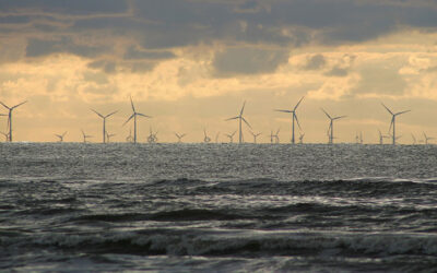 Offshore Energy Networks